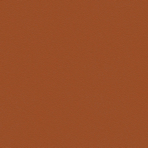 Belbien vinyl Cinnamon pr 160 accent color Rm wraps
