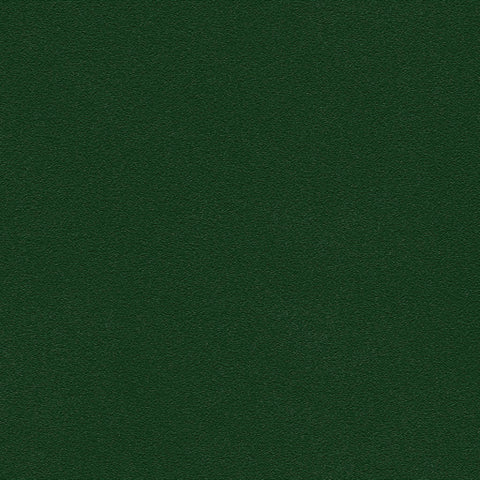 Belbien vinyl Elm green pr 276 accent color Rm wraps