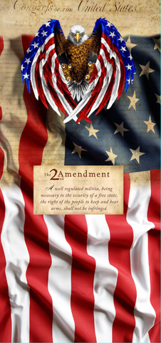 USA Flag with Eagle and 2 amendment
