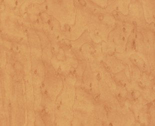 DI-NOC™ WG 767 wood grain 3M™ vinyl  Rm wraps