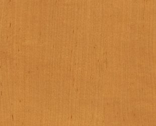 DI-NOC™ WG 831 Maple wood grain 3M™ vinyl  Rm wraps