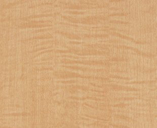 DI-NOC™ WG 833 Maple wood grain 3M™ vinyl  Rm wraps