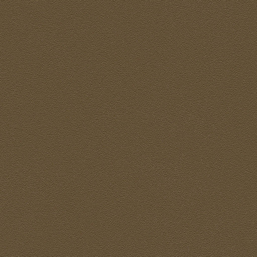 Belbien Vinyl BC 037 Amber Basic Color Rm wraps
