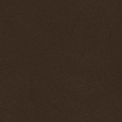 Belbien Vinyl BC 039 Sepia Basic Color Rm wraps