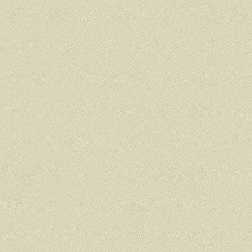 Belbien Vinyl BC 042 Shell Gray Basic Color Rm wraps
