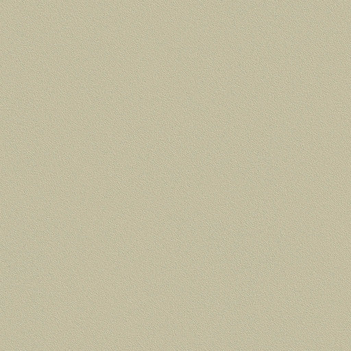 Belbien Vinyl BC 043 Ivory Gray Basic Color Rm wraps