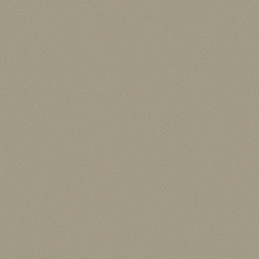 Belbien Vinyl BC 045 Clay Basic Color Rm wraps