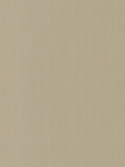 Belbien Vinyl F 469 Venus Satin Fabric Leather Rm wraps