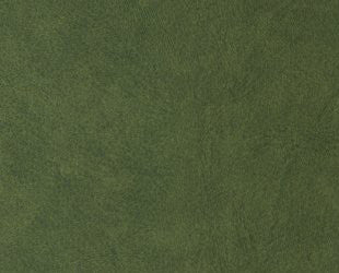DI-NOC™ LE 2741 Green Leather 3M™ Vinyl  Rm wraps