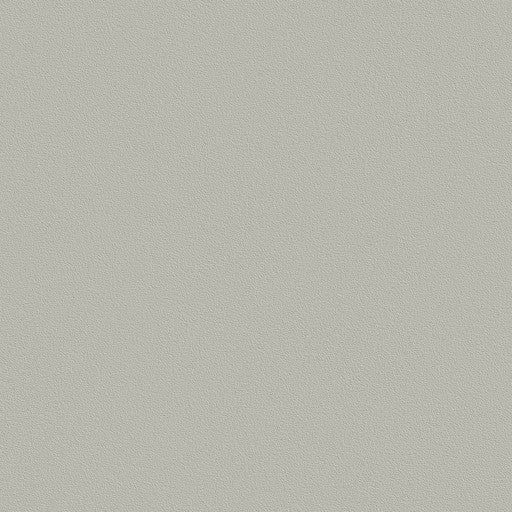 Belbien Vinyl NC 053 Silver Gray Basic Color Rm wraps