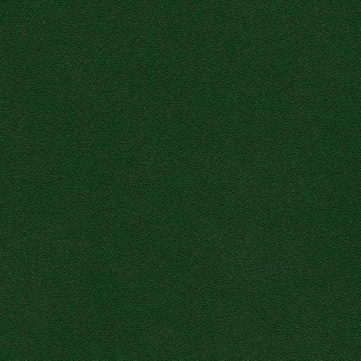 Belbien Vinyl PR 276 Elm Green Basic Color Rm wraps