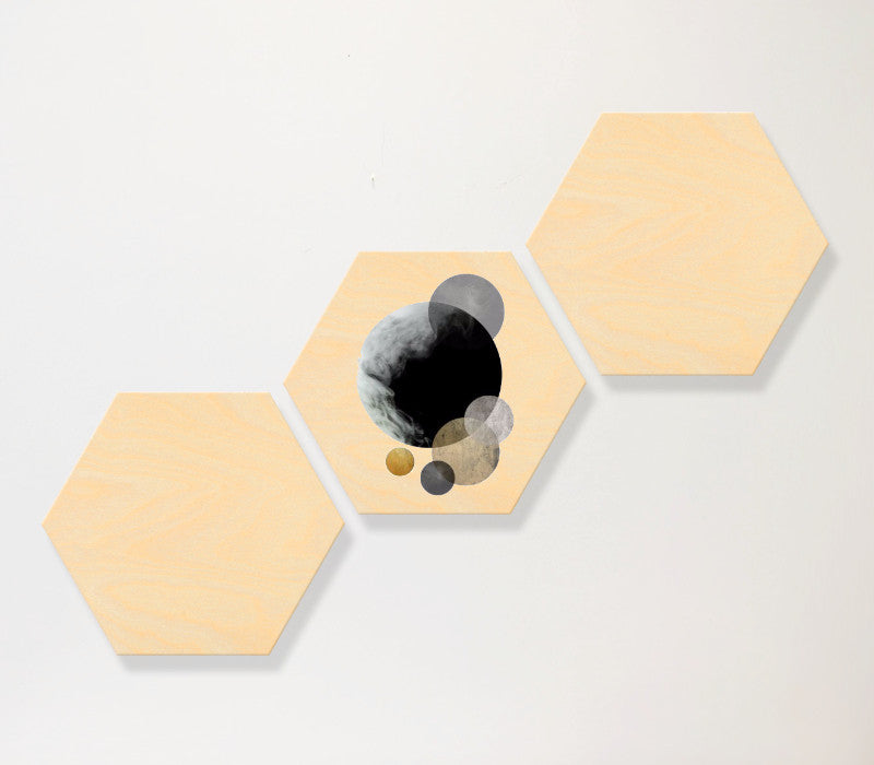 Hexagon Birch Panel Set-3-horizontal - Art Print Club