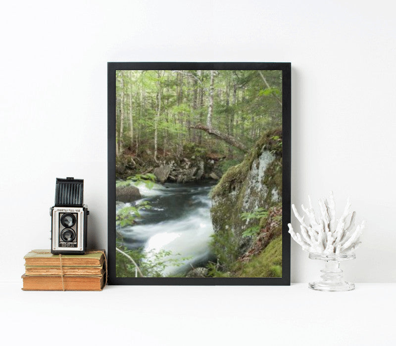 16x20-black frame with archival print - Art Print Club