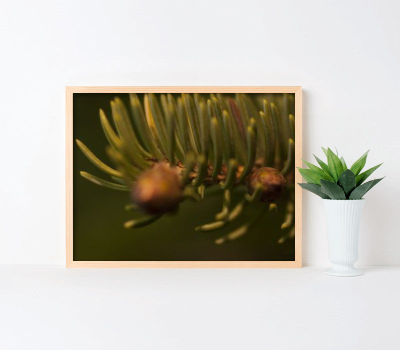 24x18-natural pine frame with archival print - Art Print Club