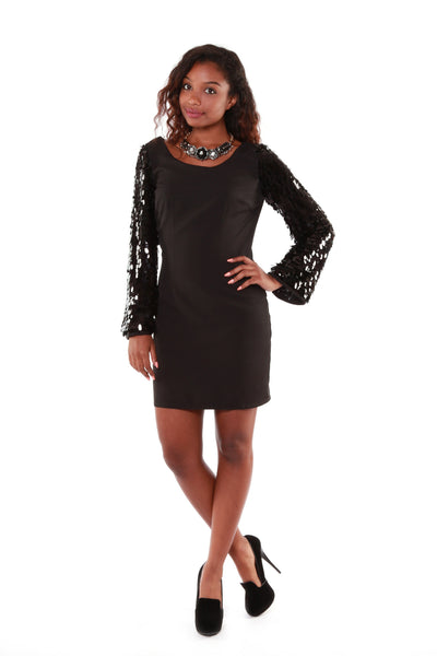 Marianne Sequin Sleeve Dress