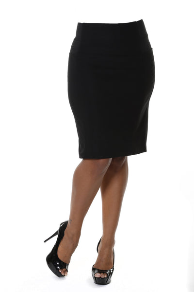 Plus Size High Waisted Skirt