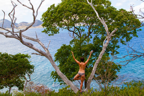 Woman doing Yoga -- Tree Pose in front of a tree