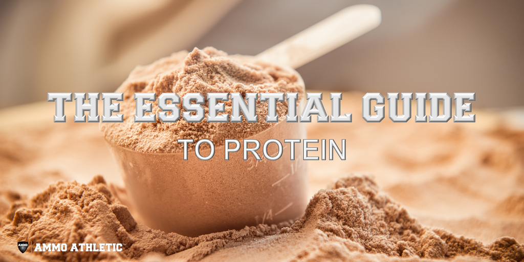 The Essential Guide To Protein