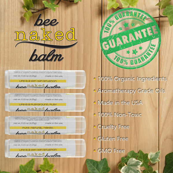 Organic LIP BALM (4-Pack) Minty Variety Pack by BeeNakedBalm