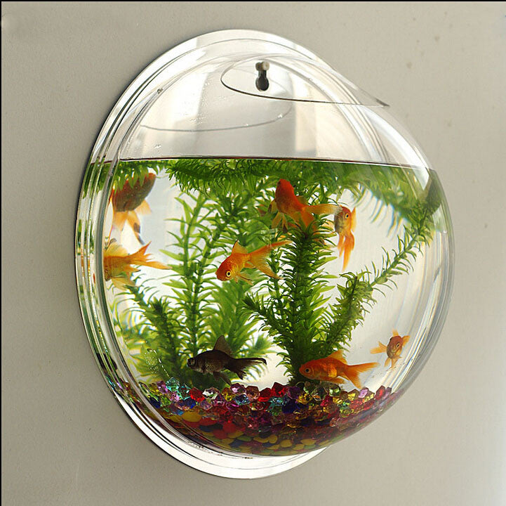 wall type mini aquarium fish bowl love fashion