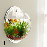 Wall-type mini-aquarium fish bowl