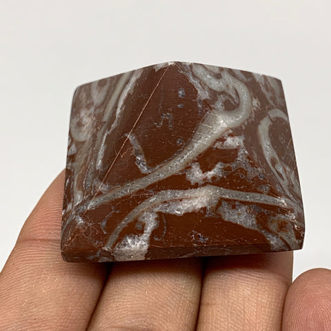 "56.9g,1.1""x1.6"" Natural Untreated Red Shell Fossils Pyramid Reiki Energy, F1184"