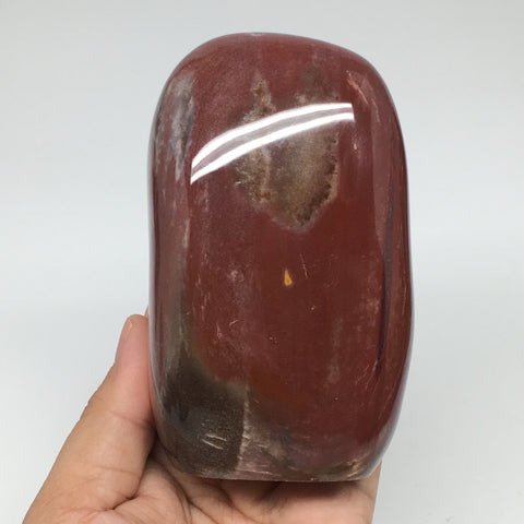 "684g, 4.4""x2.6""x2"" Natural Petrified Wood Freeform Polished Gemstones, B951"