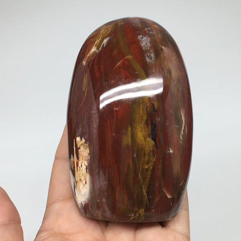 "397g, 3.9""x2.5""x1.7"" Natural Petrified Wood Freeform Polished Gemstones, B953"