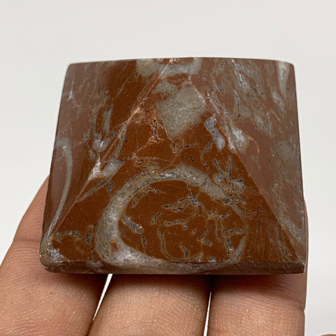 "64.3g,1.2""x1.6"" Natural Untreated Red Shell Fossils Pyramid Reiki Energy, F1217"