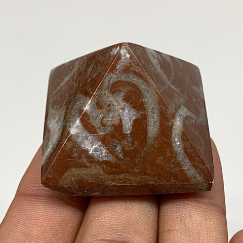 "52.1g,1.1""x1.6"" Natural Untreated Red Shell Fossils Pyramid Reiki Energy, F1220"