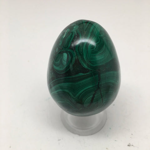 189.3 Grams Small Shiny Glassy Polished Green Natural Malachite Egg @Congo,D967 - watangem.com