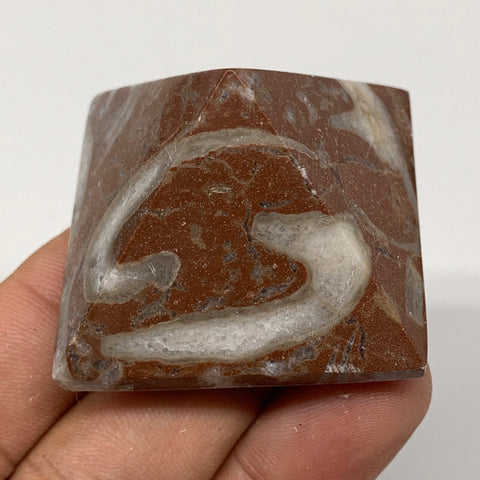 "57.2g,1.1""x1.6"" Natural Untreated Red Shell Fossils Pyramid Reiki Energy, F1234"