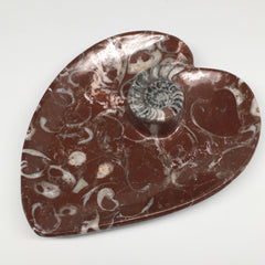 "2pcs,6.25""x5.2"" Ammonite Fossils Heart Plates Dishes Red Marble @Morocco,MF1360"