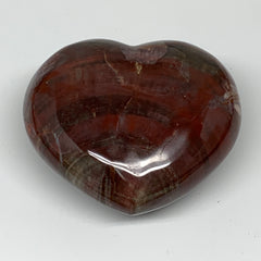 "290.6g,2.7""x3.1""x1.5"", Petrified Wood Heart Crystal Polished Reiki Gem, B4081"