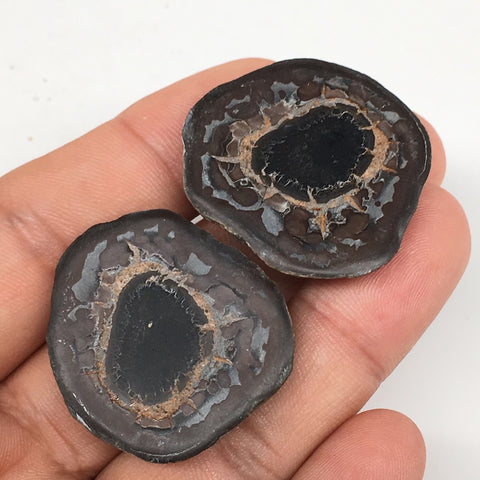 "1 Pair,26g,1.2""x1.2"" Natural Unique Septarian Nodules Slabs @Morocco,MF3555"