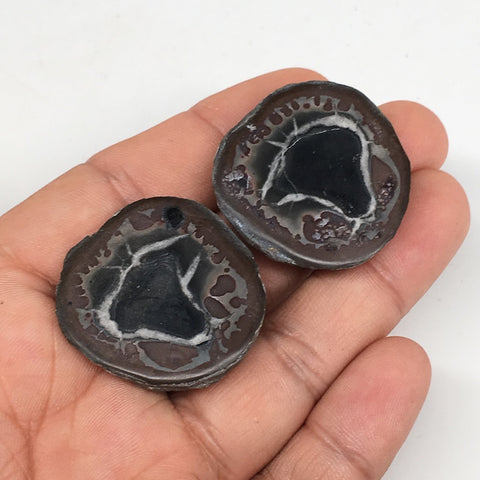 "1 Pair,29.9g,1.2""x1.2"" Natural Unique Septarian Nodules Slabs @Morocco,MF3561"