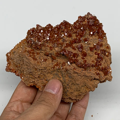 "390.1g, 4.2""x3.1""x2"", Vanadinite Crystals Cluster Mineral Specimens @Morocco,B11"
