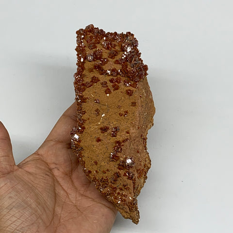 "386g, 6.25""x2.1""x1.7"", Vanadinite Crystals Cluster Mineral Specimens @Morocco,B1"
