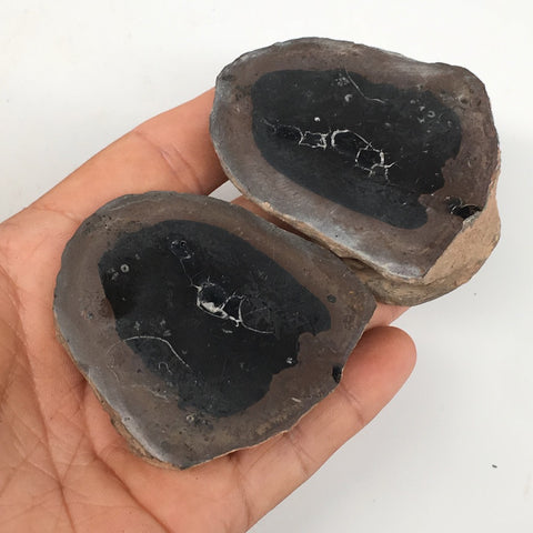 "1 Pair,198.8g,2.5""x2"" Natural Unique Septarian Nodules Slabs @Morocco,MF3616"