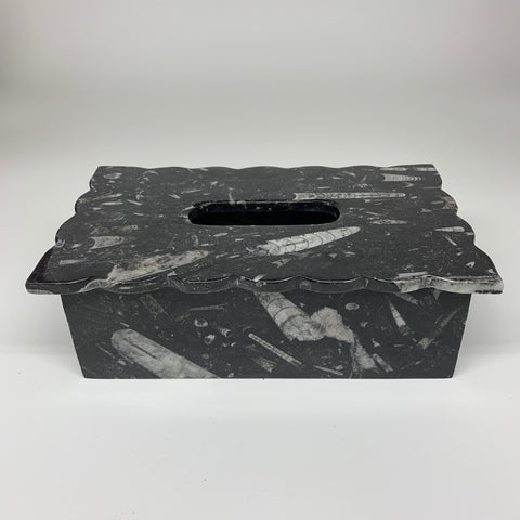 "2.32kg, 10.5""x6.25"" Black Fossils Orthoceras Tissue Paper Box Cover @Morocco,F44"