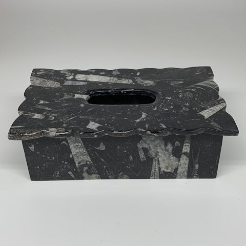 "2.29kg, 10.5""x6.25"" Black Fossils Orthoceras Tissue Paper Box Cover @Morocco,F44"