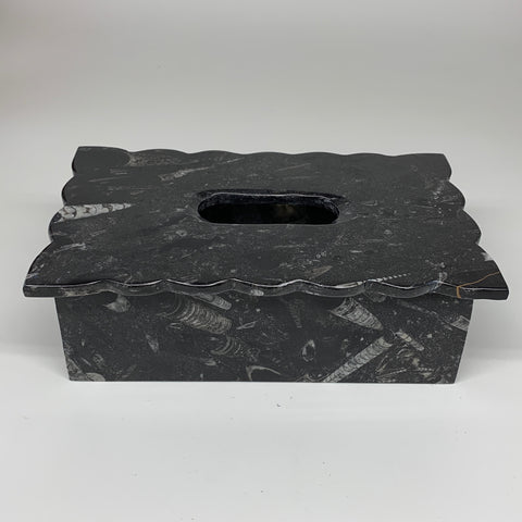 "2.31kg, 10.5""x6.2"" Black Fossils Orthoceras Tissue Paper Box Cover @Morocco,F448"