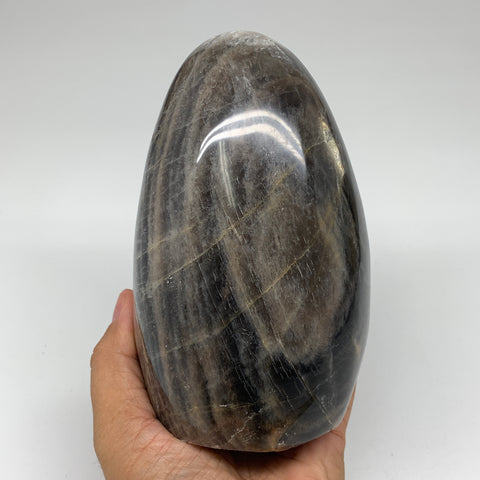 "1508g, 5.6""x 3.4""x3.3"" Natural Black Moonstone Freeform Crystal @Madagascar,B324"