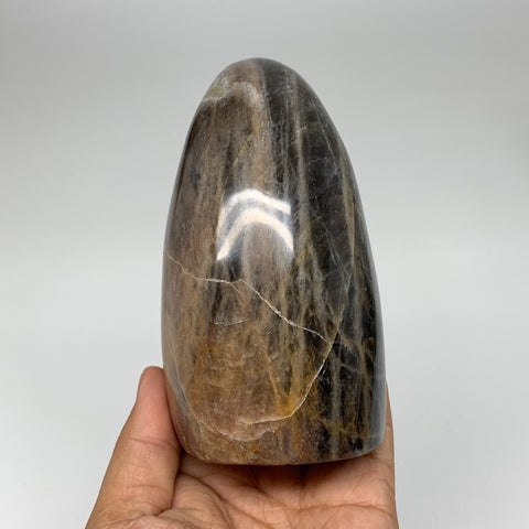 "756g, 4.7""x 2.7""x2.5"" Natural Black Moonstone Freeform Crystal @Madagascar,B3246"