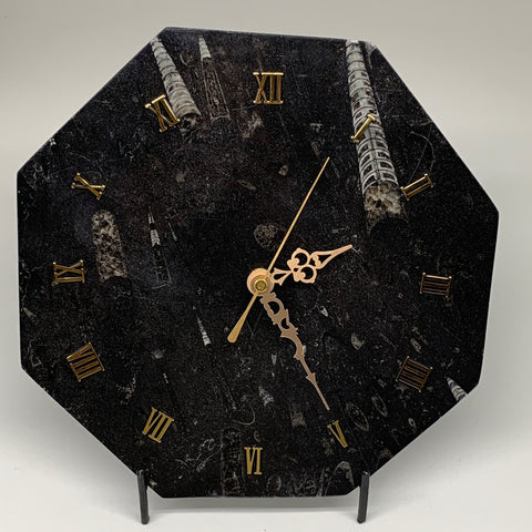 "1058g, 9.5"" Fossils Orthoceras Octagon Shape Clock, Handmade from Morocco,F476"