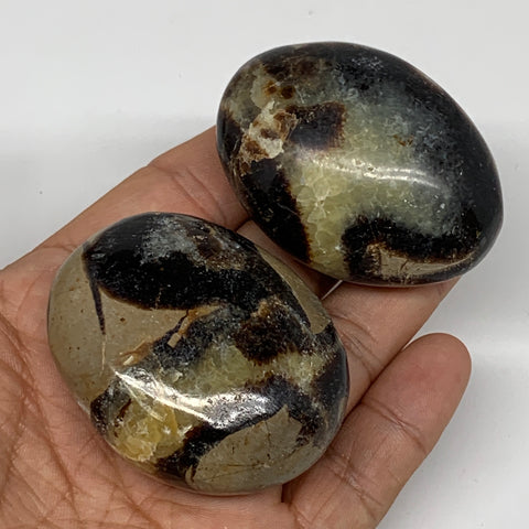 "162.8g,2""-2.1"",2pc,Septarian Nodule Palm-Stone Polished Reiki Madagascar,B5146"