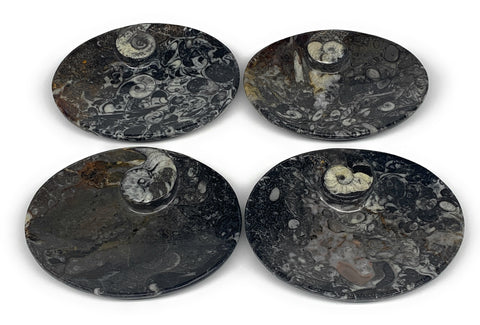 "736g, 4pcs, 4.7""x3.8"" Small Fossils Ammonite Orthoceras Bowl Oval Ring,B8859"