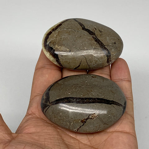 "169.4g,2.3""-2.4"",2pc,Septarian Nodule Palm-Stone Polished Reiki Madagascar,B5156"