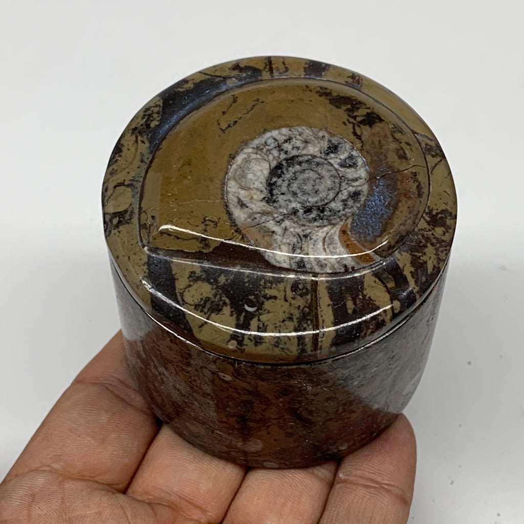 "222.4g, 2.2""x2.4"" Brown Fossils Ammonite Orthoceras Jewelry Box @Morocco,F2455"