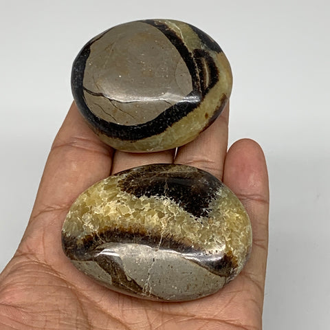 "151.5g,2""-2.2"",2pc,Septarian Nodule Palm-Stone Polished Reiki Madagascar,B5160"